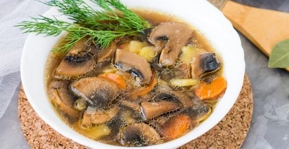 sup iz belyh gribov 2