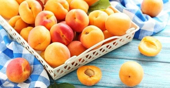 chem polezny abrikosy 2