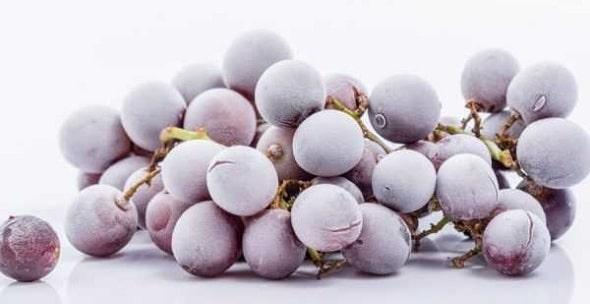 mozhno li zamorazhivat vinograd 4